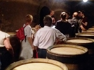 Cellar tour and wine tasting at the winery