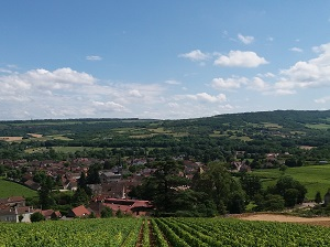 Vineyard tours with the winemaker in Santenay, Burgundy, France