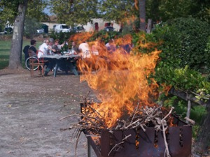Barbecue over dried vines