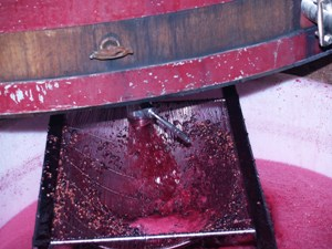 Remontage to mix the grape juice with the skin