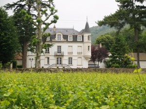Wine Experience Day at Domaine Chapelle, Burgundy