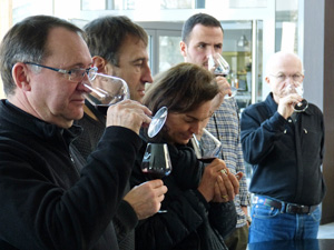 Hands-on wine tasting course in Bordeaux, France