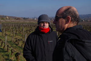 Understanding the different Burgundy terroir