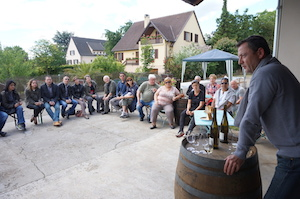 Wine making experience in Alsace