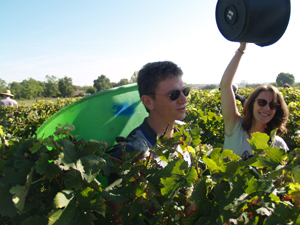 Wine experience in Bordeaux