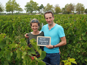 Rent a vine in Bordeaux