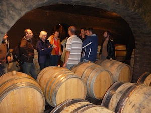 Wine tour of the cellar in Burgundy. Original wine gift for wine enthusiasts