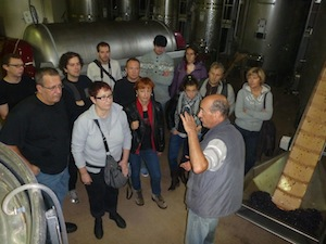 Wine course gift at the winery in Burgundy. Learn about the fermentation process