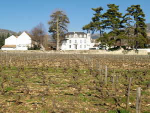 The Domaine and vineyard at winter