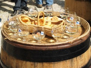 Wien Tasting Gift in France. Wine Experience at a French winery