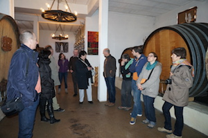 Vinification ageaing cellar tour