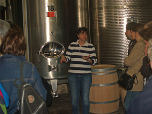 Wine making : alcoholic and malo-lactic fermentation
