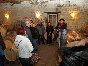 Visit the wine barrels in the cellar. Behind the scenes winery tour in Bordeaux