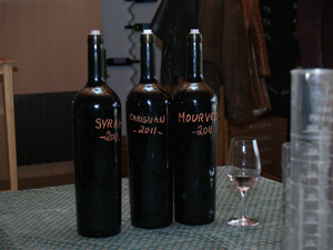 Tasting the main grape varietals