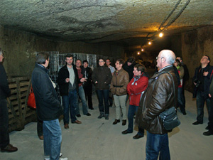 Visit of the cellar
