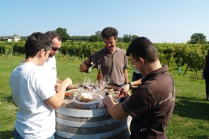 Wine tasting session of the estate's Chinon and Touraine red, whit and rosé wines