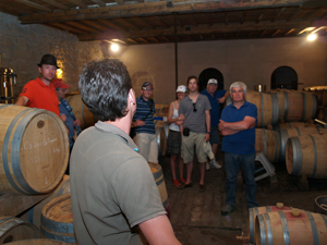 Visit of the fermentation hall and the barrel room