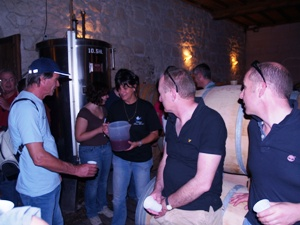 Tasting the Must, freshly harvested grape juice