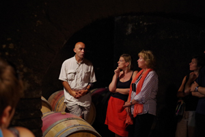 Tour of the cellar