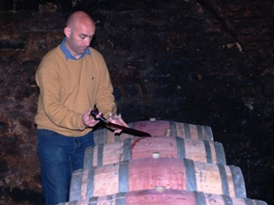 Wine tasting direct from the barrels