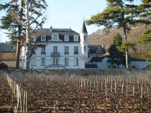 Oenology course in Burgundy at Domaine Chapelle