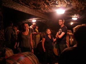 Visit of the wine cellar