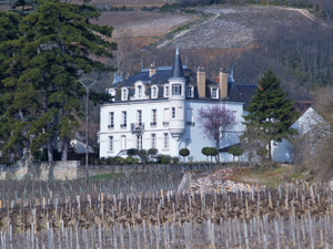 Wine Course Gift in Burgundy at Domaine Chapelle