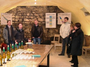 Wine tasting session in the celllar