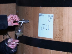 Wine tasting direct from the oak casks