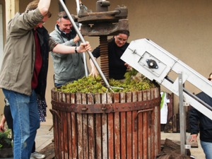 Traditional wooden wine press in action