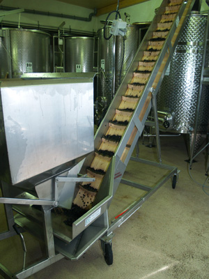 Putting the grapes into the fermentation tanks
