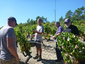 How to be a winemaker hands on gift in the Rhone valley