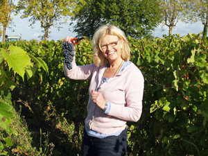 Get involved in making your own organic wine in France
