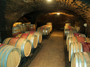 Cellar tour at Domaine Chapelle, France