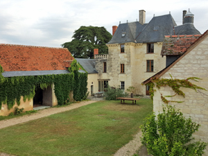 Rent-a-vine wine experience, Loire Valley, France