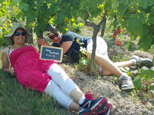 Adopt-a-vine gift experience at an organic French vineyard