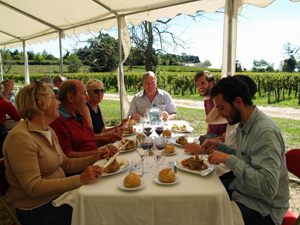 Lunch with the winemaker in the vineyard, Saint-Emilion