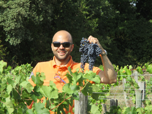 Harvest experience gift for wine lovers in Saint-Emilion