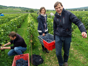 Unique wine gifts in France, Burgundy