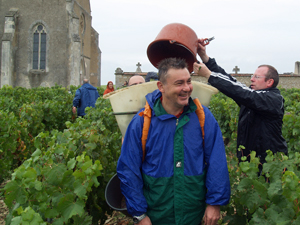 Adopt a vine in France, wine lovers, Chablis