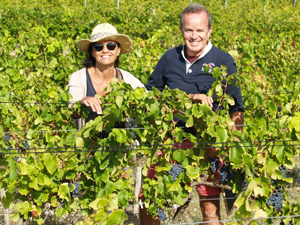 Rent-a-vine present in the Rhone Valley