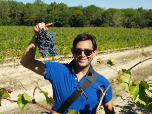 Grape harvest gift in the Rhone Valley