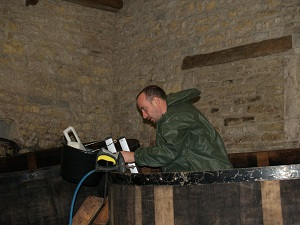 Wine making experience in France
