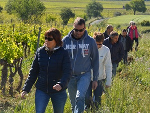 Vineyard tour at Domaine Allegria Languedoc France