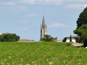 Wine-making experience in Bordeaux France