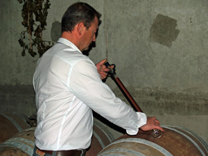 Wine-making gift experience with the winemaker