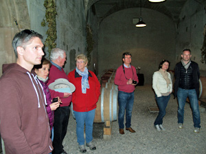 Winery tour and wine cellar visit in Alsace, France