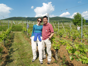 Rent-a-vine gift experience in an organic vineyard in Alsace