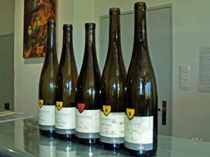 Organic wine tasting with the winemaker in Alsace