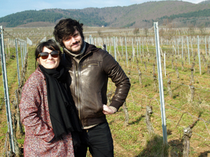 Rent-a-vine gift of some organic Alsace vines